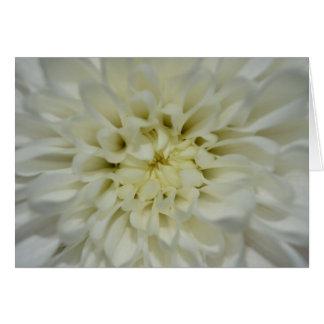 White Flower Blank Card