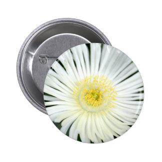 White flower pins
