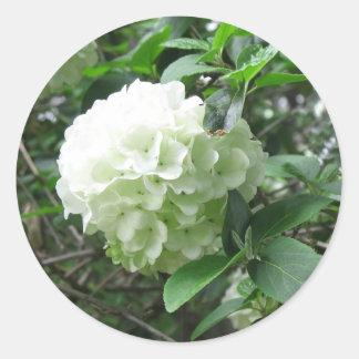 white flower classic round sticker
