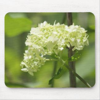 White Flower Cluster - Mousepad