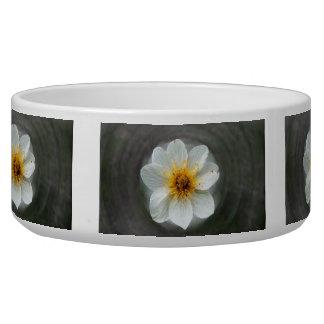 White Flower Dream; No Text Bowl