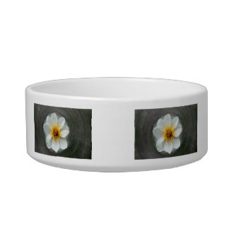 White Flower Dream; No Text Cat Water Bowls