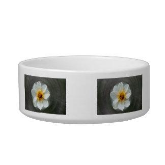 White Flower Dream No Text Cat Bowls