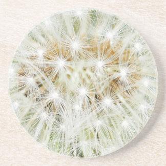 White Flower Floral Nursery Peace Cute Superb nice Sandstone Coaster