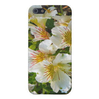 white flower garden iPhone SE/5/5s cover