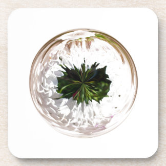 White flower in the globe drink coasters