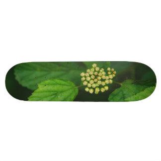 White flower macro skate decks