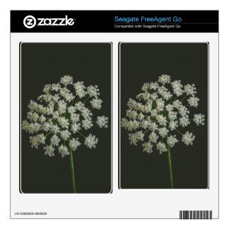 White flower macro seagate FreeAgent go skin