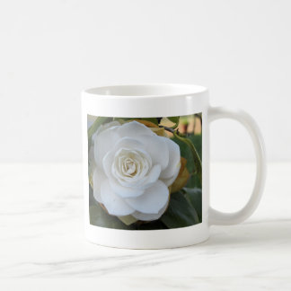White flower of Camellia in spring Coffee Mug