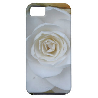 White flower of Camellia in spring iPhone SE/5/5s Case