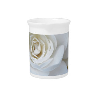 White flower of Camellia in spring Drink Pitcher