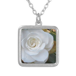 White flower of Camellia in spring Silver Plated Necklace
