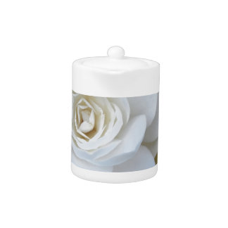 White flower of Camellia in spring Teapot