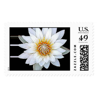 White Flower Postage Stamps