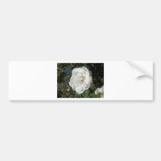 White Flower Rose Bumper Sticker
