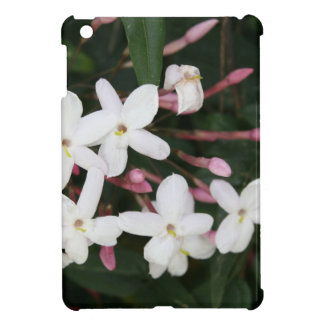 white,flower,stamen,petals,jasmine,fragrant,blosso iPad mini cover