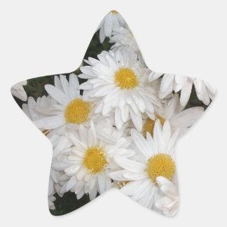 White flower star sticker