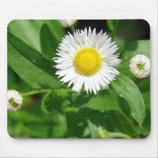 White Flower Weed Mouse Pad