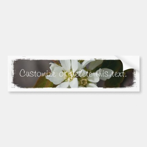 White Flower with Ant; Customizable Bumper Sticker