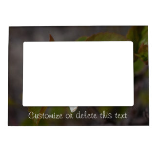 White Flower with Ant; Customizable Magnetic Picture Frame