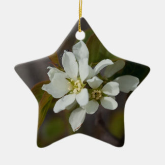 White Flower with Ant Double-Sided Star Ceramic Christmas Ornament