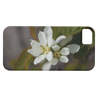 White Flower with Ant iPhone SE/5/5s Case
