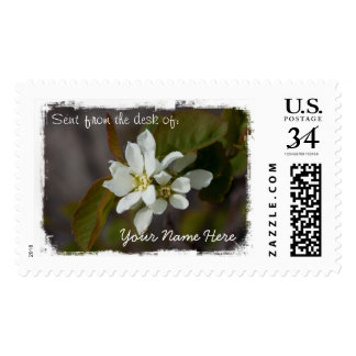 White Flower with Ant Postage