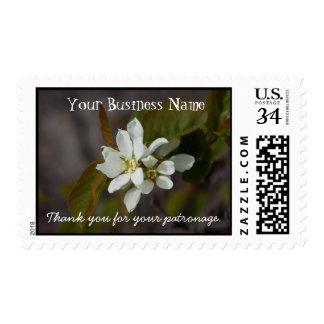 White Flower with Ant; Promotional Stamp