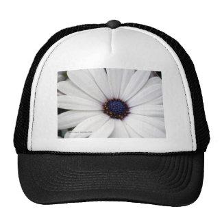 White flower with blue center trucker hat