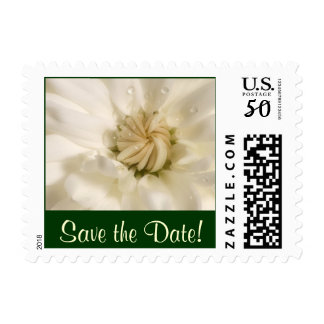 White Flower with Rain Drops, Save the Date! Postage