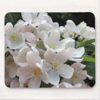 White Flowering Crabapple Tree Mouse Pad