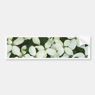 White Flowering Dogwood Bumper Stickers