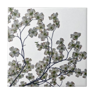 White Flowering Dogwood Tile