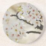 White Flowering Tree Drink Coasters