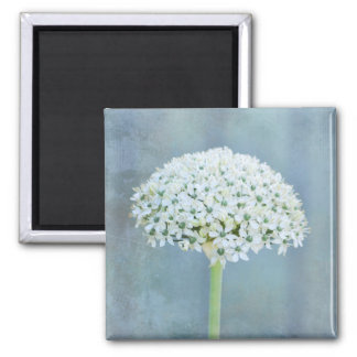 White Flowers 2 Inch Square Magnet