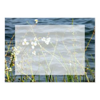 White flowers green stems blue pond back card