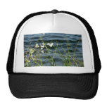 White flowers green stems blue pond back hats