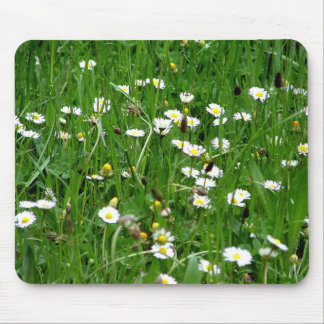 White flowers in a meadow mouse pad