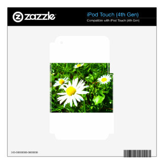 white flowers in spring skin for iPod touch 4G