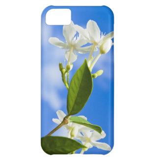 White Flowers iPhone 5 Case