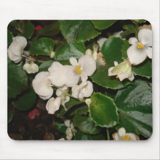 White Flowers Mouse Pad