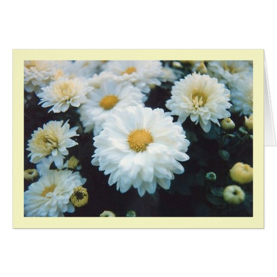 White Flowers Notecards Card