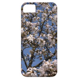 White flowers off star magniolia iPhone SE/5/5s case