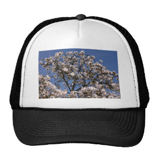 White flowers off star magniolia trucker hat