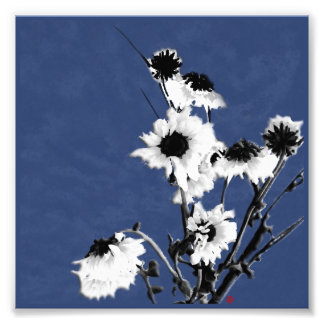 white flowers on blue photo print