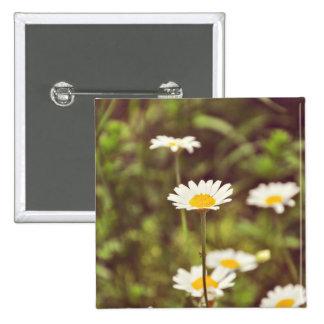 White flowers pin