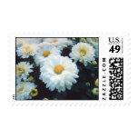 White Flowers Postage
