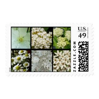 White Flowers Postage Stamp