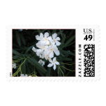 white flowers postage stamps