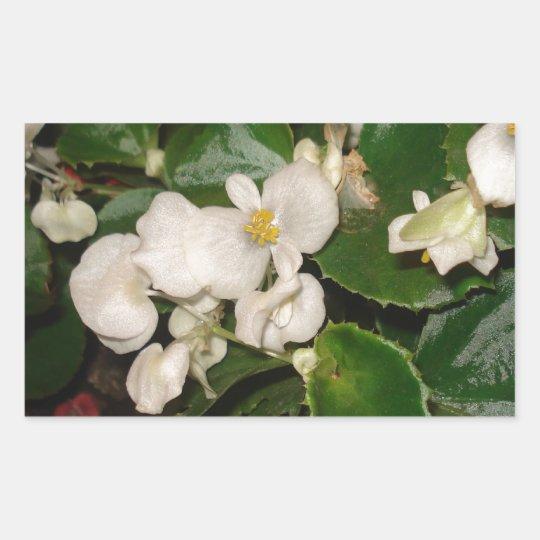 White Flowers Rectangular Sticker